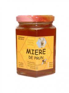 prun-mic